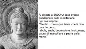 Buddha---medit...