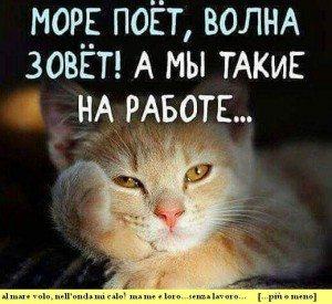 kat..rus